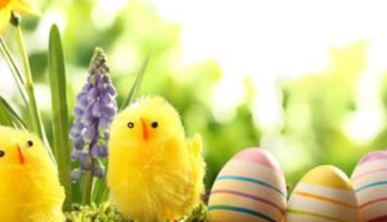 We are so eggcited about Easter